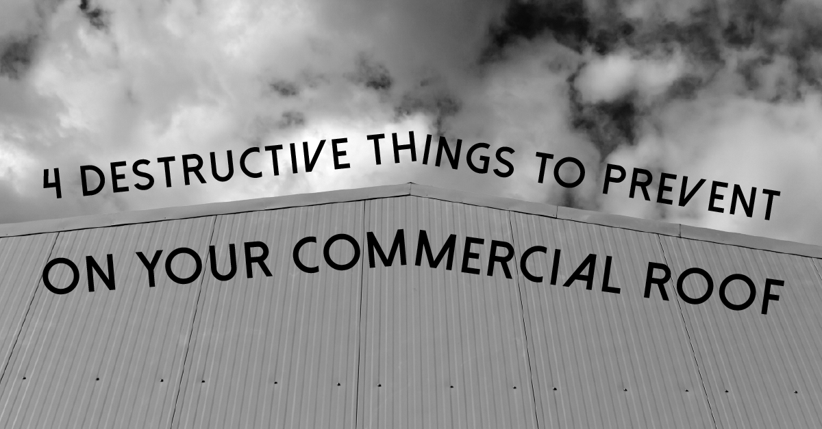 4 Destructive Things to Prevent on Your Commercial Roof