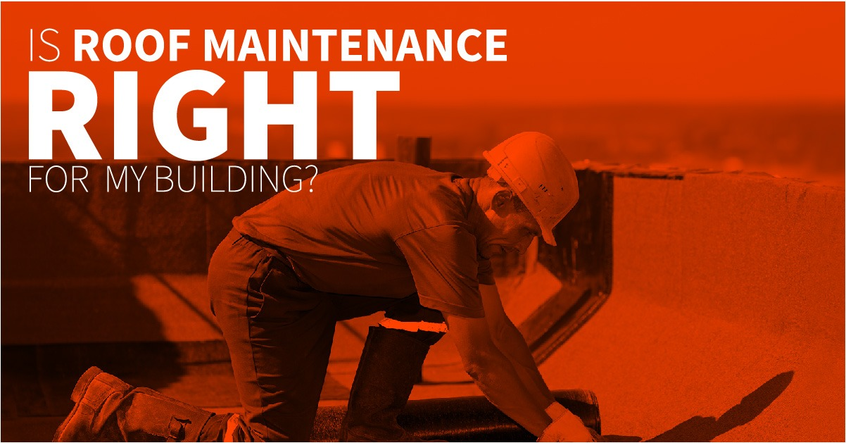 Is Roof Maintenance Right for My Building?