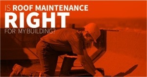 How Roof Maintenance Saves Managers Time and Money