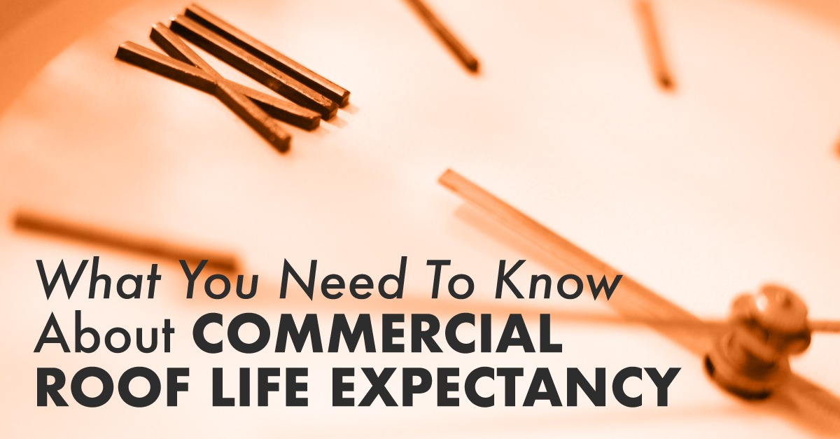 What You Need To Know About Commercial Roof Life Expectancy